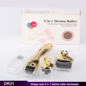 1200 Needles 180 Needles 600 Needles 3 in 1 Dermaroller Derma Roller pictures & photos