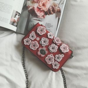 2017 Wholesale Hot and Recommend Women′s Bag (1256) pictures & photos