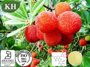 Bayberry Extract Free Sample Supply Natural Anti-Oxidant 50% Myricetin pictures & photos