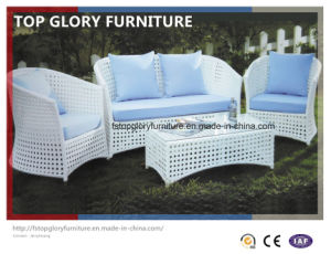 Outdoor Rattan Furniture Hotel Leisure Sofa (TG-081) pictures & photos
