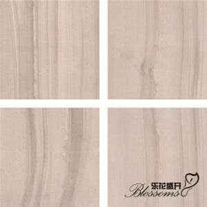 Building Material Mat Finishing Semi-Polished Porcelain Tile for Inside (600X600mm) pictures & photos