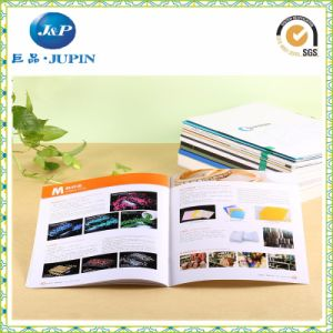 Warranty Booklet / Color Booklet / Brochure Printing / Printed Booklet (MP-011) pictures & photos