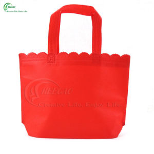 2017 Hot Sale Promotional Non Woven Shopping Bag (KG-PN015) pictures & photos