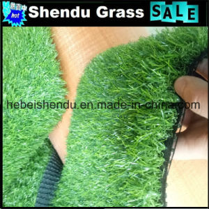 Double Backing Artificial Grass Turf with 30mm Height pictures & photos