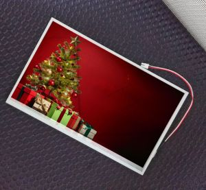 10 Inch 1024X600 Resolution Customizable TFT LCD Module Touch Screen LCD Screen Display C010 pictures & photos