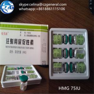 Anti-Aging Steroid Hormone Human Menotrophins Gonadotrophin HMG 75iu pictures & photos