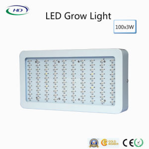 Classic Design 3W*100PCS LED Grow Light for Herbs & Flowers pictures & photos