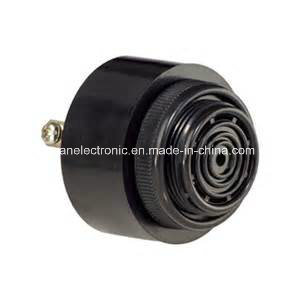 Wholesale Hot Sales 43*33 12VDC Electric Piezo Buzzer 80dB 2pin Piezo Buzzer pictures & photos