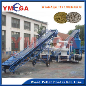 Turkey Project Biomass Fuel Wood Pellet Processing Line pictures & photos