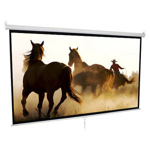 100inch Manual Wall Screen, Pull Down Projector Screen/Projection Screen pictures & photos