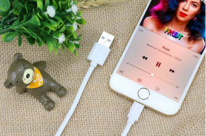 High Quality Charger Cable for Apple iPhone5 / 6se USB Cable pictures & photos