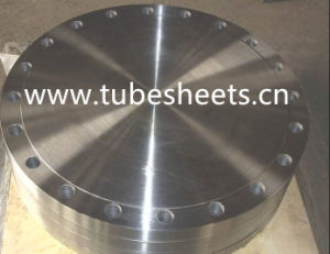 ANSI B16.5 Stainless Steel 1.4308 Ss316 Blind Forged Flanges