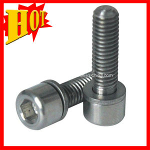 DIN6912 Pure Titanium Bolts for Sale pictures & photos