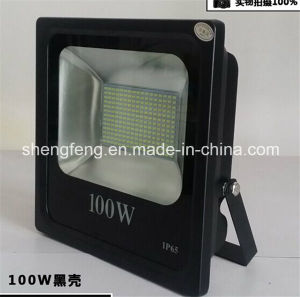 100W High Quality Waterproof Floodlight LED Outdoor Light pictures & photos