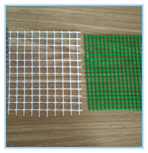 Square Hole Size Plastic Mesh pictures & photos