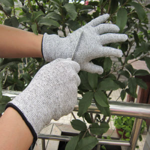 Hppe Fiber Cut Resistance Gloves Food Industry Safety Work Glove pictures & photos