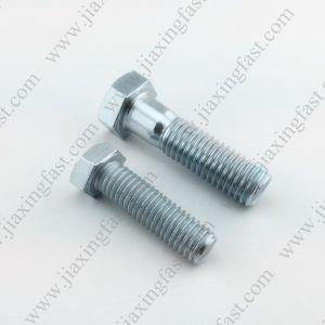 Hex Bolt / Hexagonal Head Bolt / Hex Head Cap Screw / DIN933 DIN931 DIN960 DIN961 ISO4014 ISO4017 DIN558 DIN601 pictures & photos