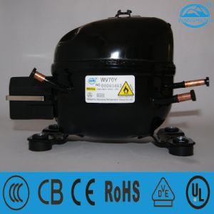 Piston Reciprocating Structure Compressor (WV70Y) R600A Refrigerant Applied to Refrigerator pictures & photos