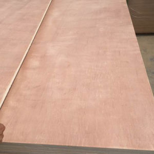 Commercial Plywood Furniture/Decoration Grade Plywood pictures & photos