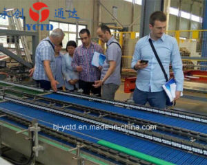 Beijing Y. C. T. D. Packaging Machinery Conveying System pictures & photos