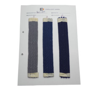 Fashion Webbing Belt Materials (EUCL1500)