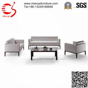 Elegant Outdoor Sofa Set (CY-S0023)