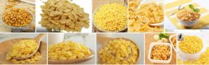 Different Output Corn Flakes Processing Line pictures & photos