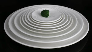 Melamine Plate for Hotel and Restaurant Tableware (TP005-016) pictures & photos