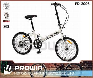 "China 20"" with 6speed Steel Folding Bike (FD-2006)"