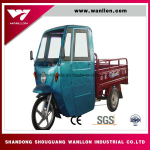 Customized Water Cooled Engine /Simple Roof /Motor Trike pictures & photos