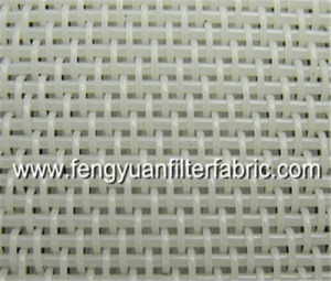 Sludge Dehydration Fabric Mesh pictures & photos