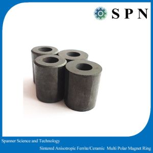 Sintered Ferrite Permanent Multipole Magnet Rings pictures & photos