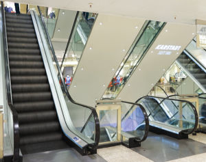 China Escalator with German Technology pictures & photos