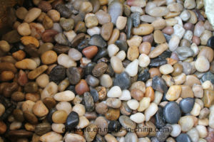 Polished Pebble Stone for Decoration pictures & photos