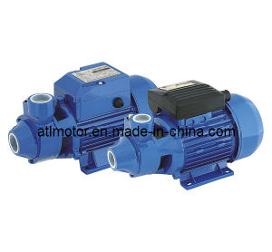Water Pump--Peripheral Pump (QB60) pictures & photos