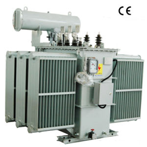 Competitive Power Transformer, Transformer (S11-1000/10) pictures & photos