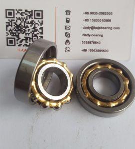Magneto Bearings E3 E4 E5 E6 E12 for Engraving Machine pictures & photos