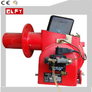 Diesel Burners of High-Efficient and Energy-Saving Performance pictures & photos