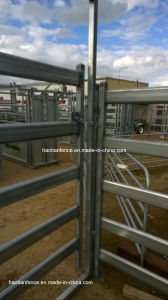 115X42mm Oval Pipe Livestock Panel Yard, Cattle Panel Yard pictures & photos