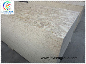 OSB (Oriented Strand Board) pictures & photos