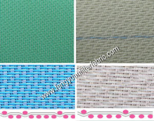 Polyester Forming Fabric pictures & photos