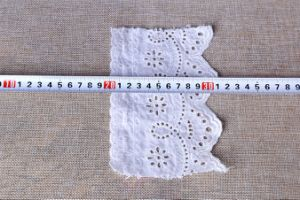 High Qualily Cotton Lace pictures & photos