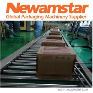 Newamstar Carton Conveying Chain System pictures & photos