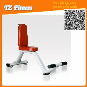 Commercial Fitness Equipment/Gym Equipment Utility Benchtz-6052 pictures & photos
