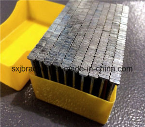 Galvanized St Nails for Construction and Packaging From China pictures & photos