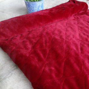 Soft Flannel Electric Over Blanket in Red for Winter Days pictures & photos