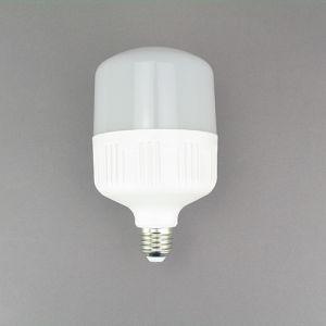 LED Global Bulbs LED Light Bulb 18W Lgl3108 SKD pictures & photos