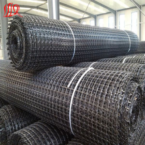 Levee Protection for Biaxial Geogrid pictures & photos