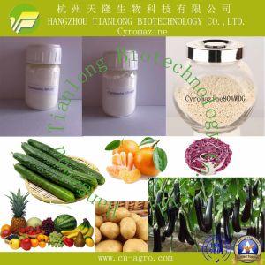 Cyromazine (98%TC, 20%WP, 50%WP, 75%WP, 50%SP, 75%SP, 10%SL, 80%WDG) pictures & photos