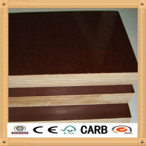 15mm-25mm Water-Proof Shuttering Brown/Black Film Faced Plywood pictures & photos